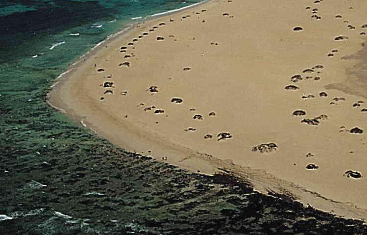 Nudista Fuerteventura Medano